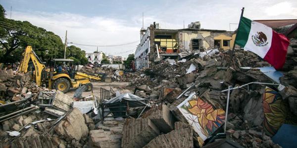 La unidad canina de Marina ha logrado el rescate de 12 personas con vida en Oaxaca.