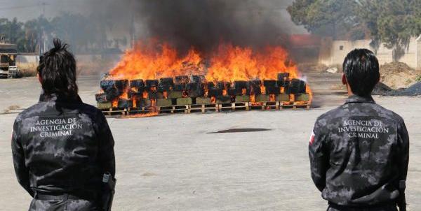 Autoridades federales incineran dos toneladas y media de narcóticos en Sinaloa