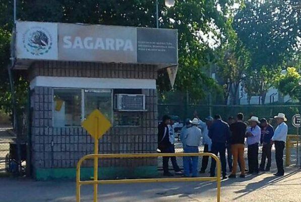 Productores toman la Sagarpa