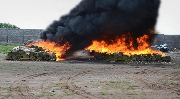 Elementos federales incineran droga que aseguraron