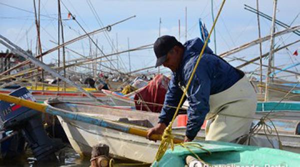 Alcanza Programa de Empleo Temporal los 30 mdp en campos pesqueros