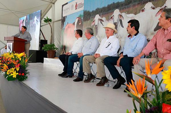 Ganadería, bastión económico importante en Sinaloa