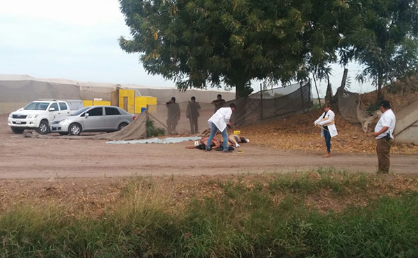 Localizan a dos personas sin vida en Villa Juárez –Navolato