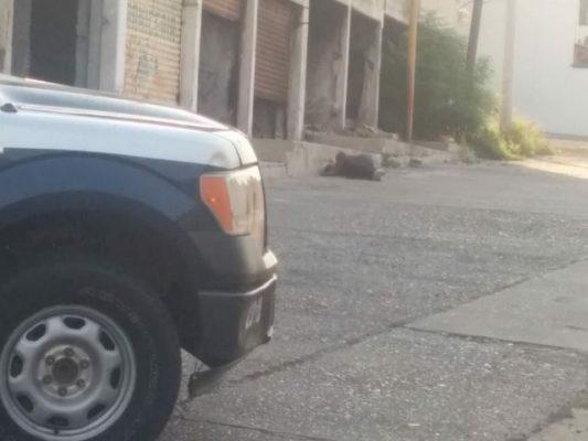 Arrojan cadáver a un costado del antiguo Mercado de Cañadas