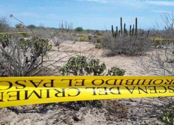 Localizan los restos de una persona en la sindicatura  Ruiz Cortines