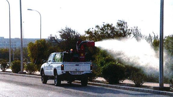 Vecinos de Aguaruto claman por fumigaciones contra mosquitos