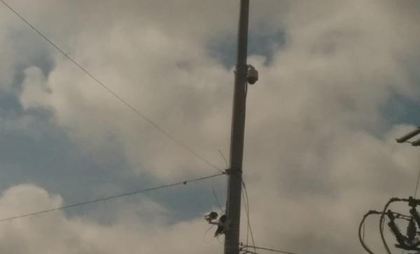Se roban otras seis cámaras de vigilancia