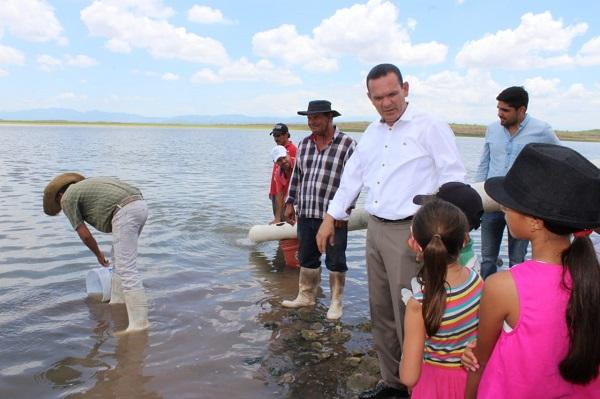 Siembran medio millón de alevines de tilapia en dique de Los Pobres