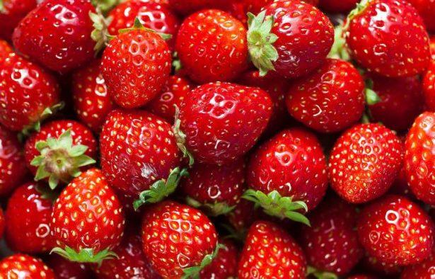 EU rechaza tonelada de sus fresas y él la vende por redes sociales