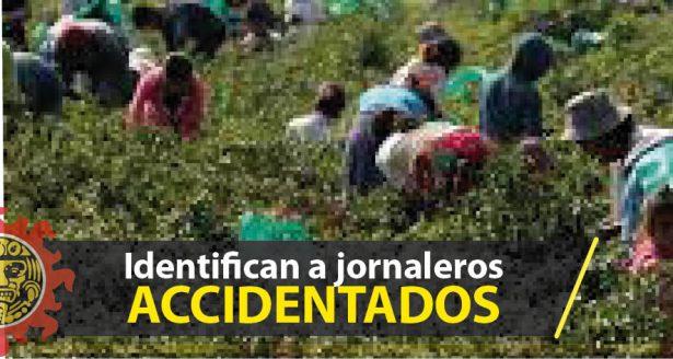 Identifican a jornaleros accidentados