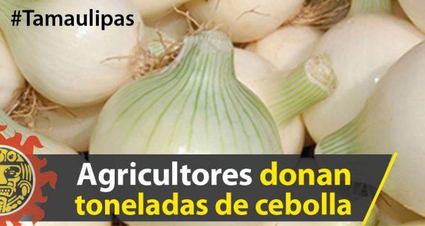 Agricultores donan más de 112 toneladas de cebolla en Tamaulipas