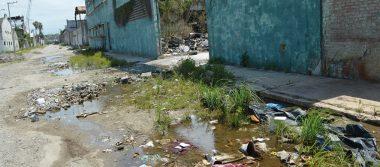 Isleta Pérez, sitio que debe revivir