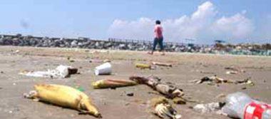 Urgen reforzar campañas para evitar basura en playas durante las vacaciones