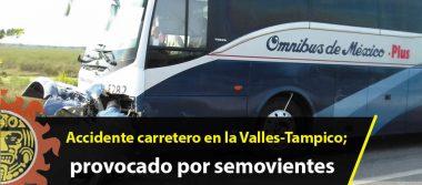 Accidente carretero en la Valles-Tampico; provocado por semovientes