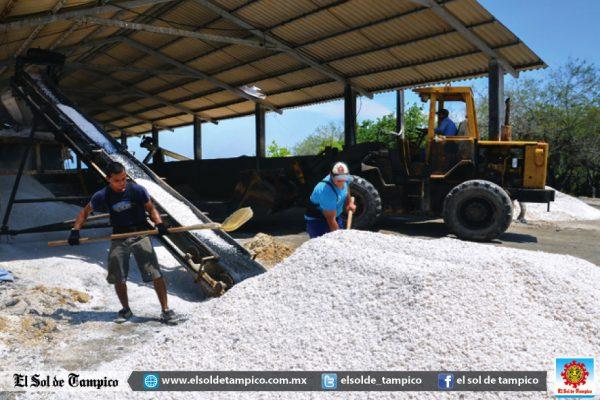 Severa crisis atraviesa la industria de la sal