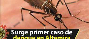 Surge primer caso de dengue en Altamira