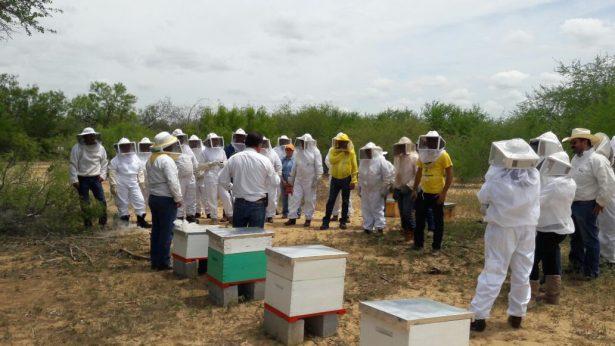 Capacitan a productores apícolas en técnicas para el mejoramiento de la productividad