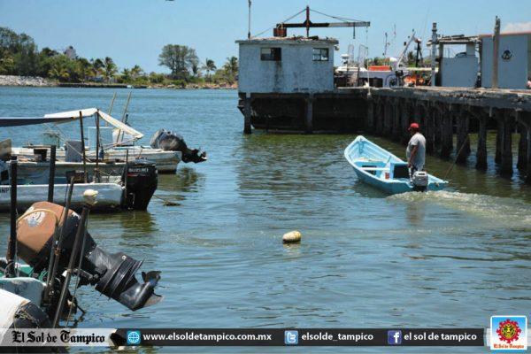 Desplaza contaminación a pescadores del río Pánuco