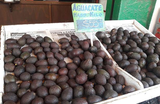 Elevado precio del aguacate Hass en los mercados municipales de Tampico