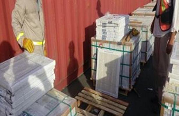 Profepa detecta insectos en cargamento marítimo procedente de la India
