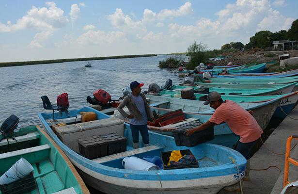 Creará Tamaulipas marca propia de productos marinos
