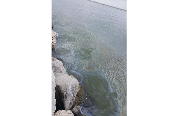 Derrame de hidrocarburo afecta la zona de escolleras