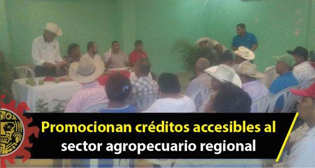 Promocionan créditos accesibles al sector agropecuario regional