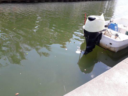 Canal de La Cortadura y Laguna del Carpintero, sitios que más se llenan de basura