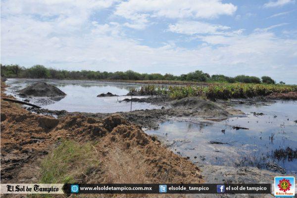 Petróleo crudo inunda cultivos de soya en el área rural de Altamira