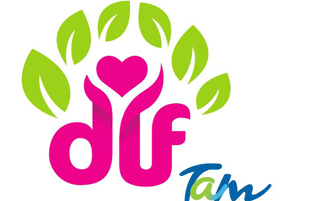 Proponen al DIF Estatal como encargado de distribuir ayuda a damnificados