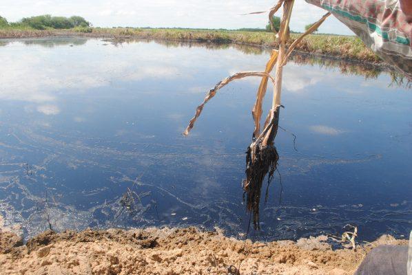 Identifican riesgo de más derrame de hidrocarburos en ejido de Altamira