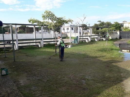 Escuelas de Tampico registran problemas de maleza a causa de las lluvias