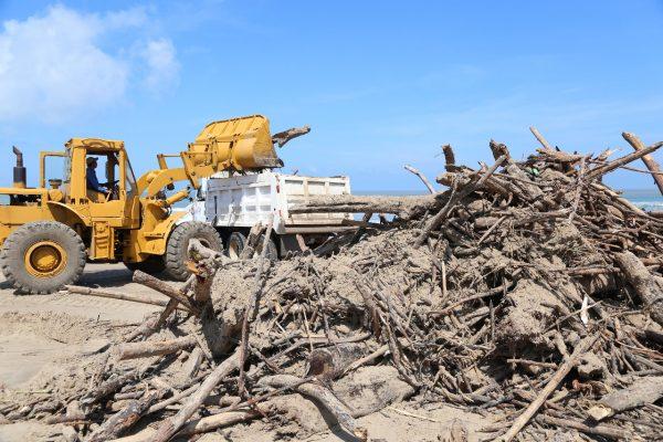 Extraen noventa toneladas de palizada de Miramar