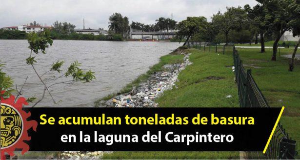 Se acumulan toneladas de basura en la laguna del Carpintero