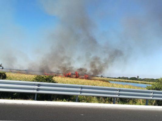 Incendio en el Libramiento Poniente moviliza a bomberos