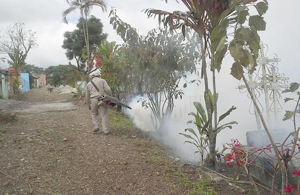Veracruz, primer lugar en zika y dengue en 2016