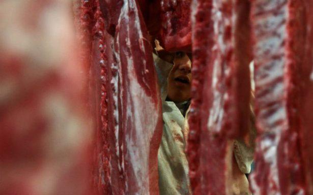 EU levanta prohibición a importaciones de carne de cerdo procedentes de México