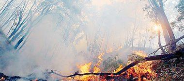 Sofocan en Omitlán nueve incendios forestales provocados