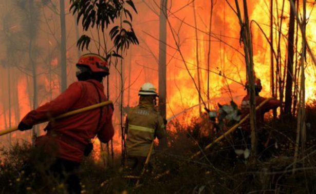 Mueren 19 personas por incendio forestal en Portugal; reportan varios heridos