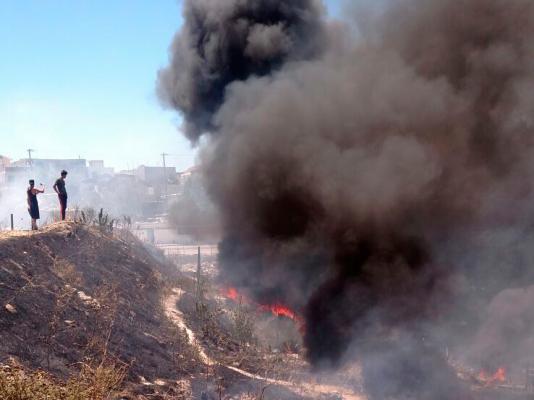 Viento y calor atizan incendios forestales