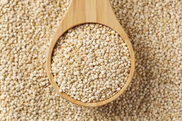 Quínoa, una semilla con alto contenido nutricional 🌾