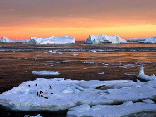 Greenpeace advierte de desprendimiento de iceberg en la Antártica