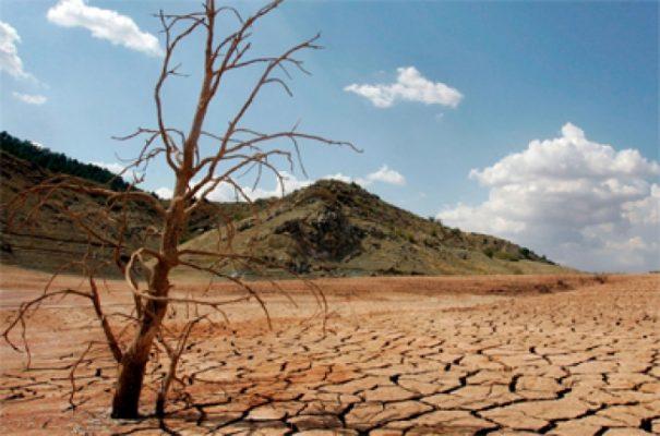 Se duplica superficie afectada por sequía ante cambio climático: FAO