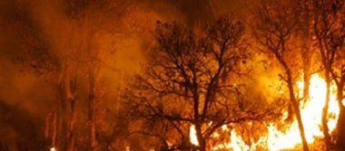 California controla un 17% de incendio forestal en Mariposa