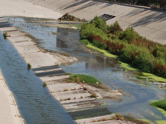 Daña  al ambiente el agua contaminada
