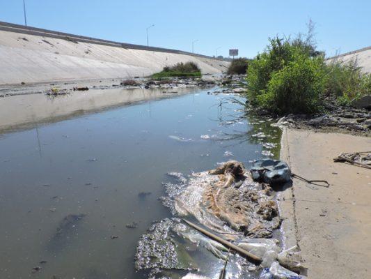 Faltan recursos para limpiar cuenca del río
