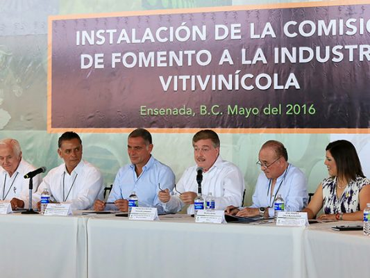 Avanza Ley de Fomento a la Industria Vitivinícola