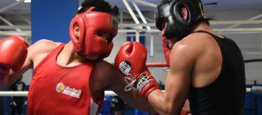 Retornan boxeadores a los entrenamientos
