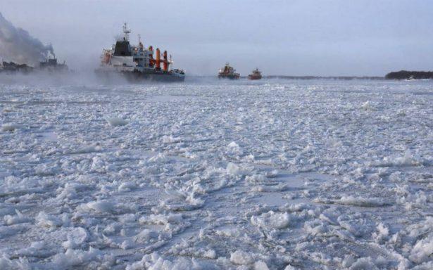 Hasta los pingüinos se resguardan del frío extremo que azota Canadá