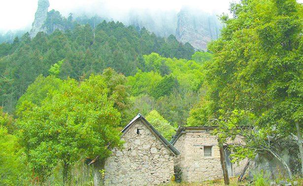 Parque Nacional El Chico, tiempo de descanso con olor a bosque